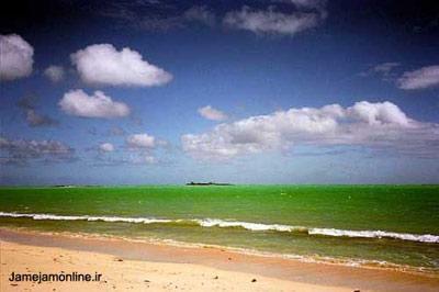 تصویر زیبایی از یک ساحل رویایی در مجمعالجزایر باهاما. عکس نیکول هیریگویان.