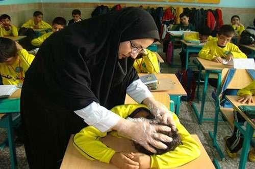 چرا شپش در مدارس بالا شهر تهران بیشتر است؟