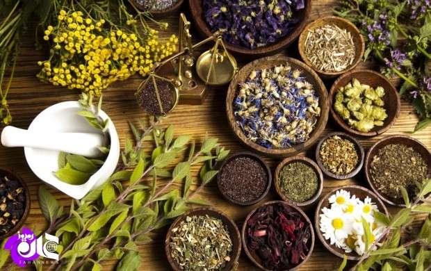 صادرات گیاهان دارویی آلمان برابر با درآمد نفتی ایران