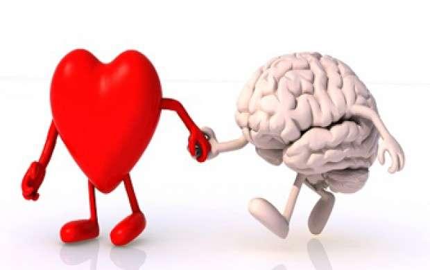 جذب مشتری با نمایش قلب و مغز شکافته+عکس
