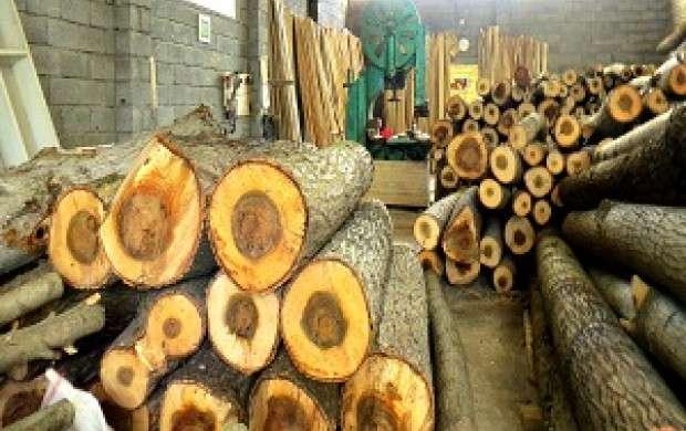 ۷۰ درصد بازار چوب ایران، وارداتی است