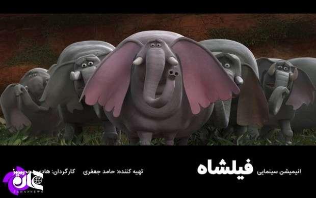 انتقادکارگردان «فیلشاه» از داوری نشدن فیلمش