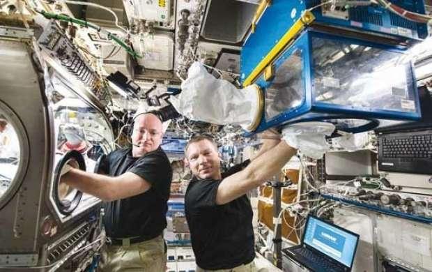 درمان تنبلی عضلات در فضا با راهکار دارویی