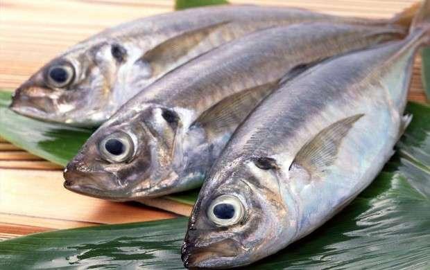 نوسان قیمت ماهی در ایام پایانی سال