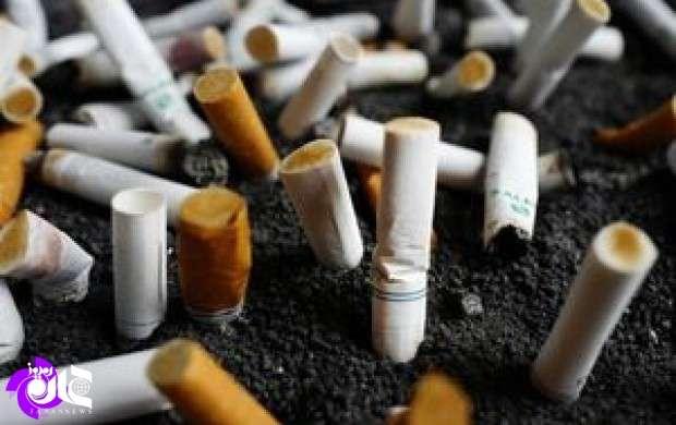پول مالیات سیگار کجا می رود؟