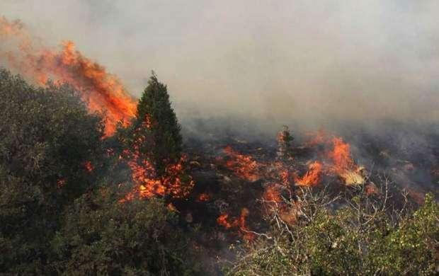۲۶۰ هکتار از جنگل های ارسباران سوخت
