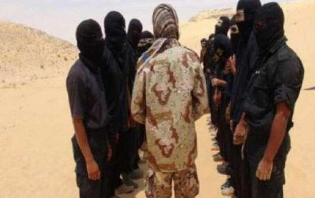 هلاکت یک سرکرده داعش در سینای مصر