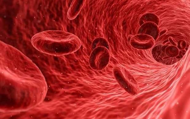 ۳ ماده غذایی مفید برای کاهش کلسترول