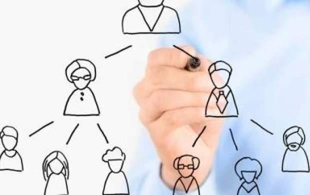 تلهگذاری شرکتهای هرمی برای تحصیلکردگان بیکار