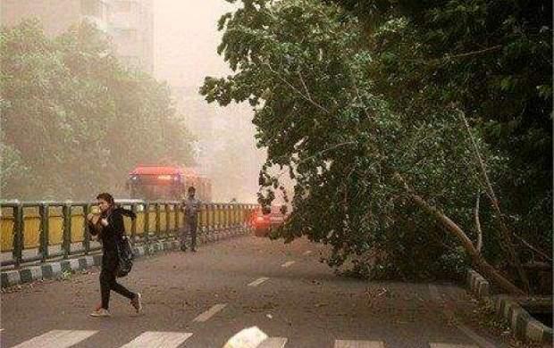 خیزش گردو خاک در تهران طی امروز
