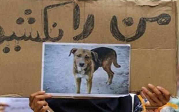 ادعای شهرداری در خصوص فیلم سگکُشی با اسید