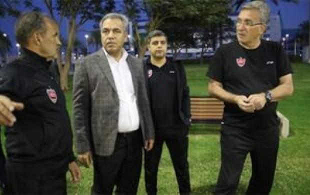 عرب از مدیرعاملی پرسپولیس استعفا کرد