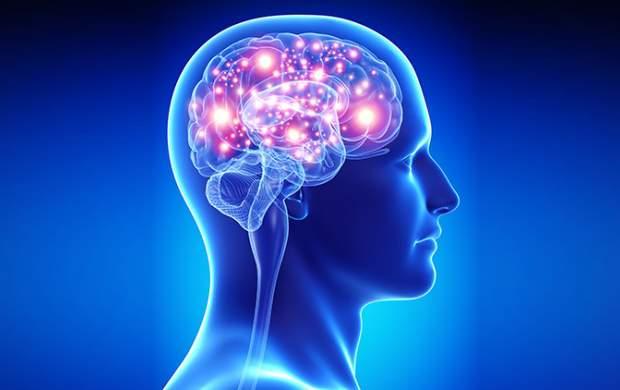 چگونه هوش خود را تقویت کنیم؟
