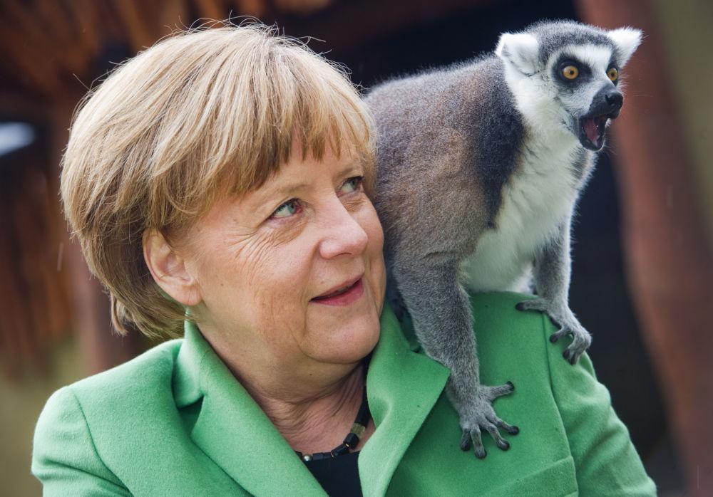 میمون بازی صدراعظم آلمان