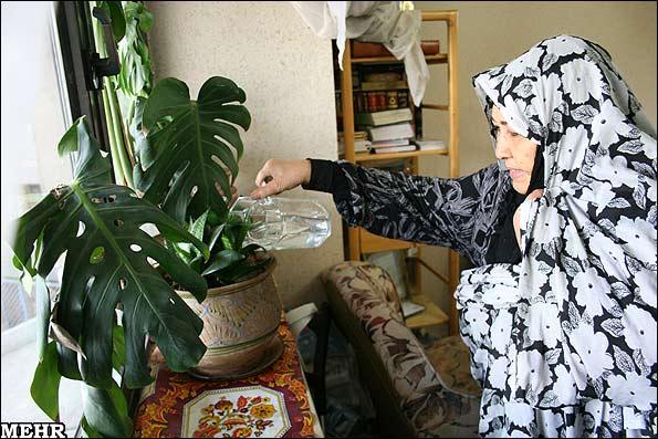 زنی که هفت بار در جبهه مجروح شد(عکس)